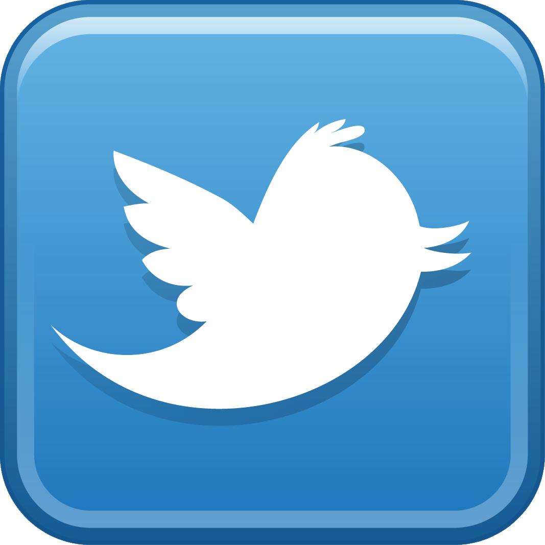 Image result for twitter logo png